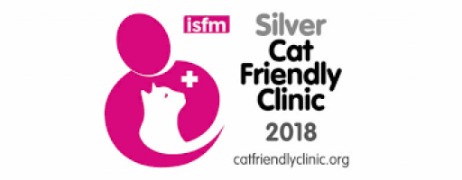 Ashwood is a silver cat friendly clinic